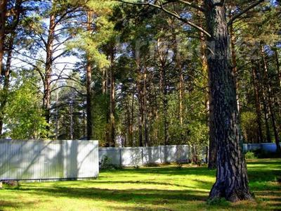 3-комнатный дом, 65 м², 23 сот., Село Кубовая ул. Зелёная 8 за 27 млн 〒 в Новосибирске — фото 3