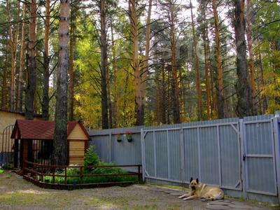 3-комнатный дом, 65 м², 23 сот., Село Кубовая ул. Зелёная 8 за 27 млн 〒 в Новосибирске — фото 5