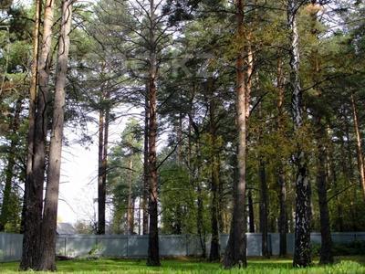 3-комнатный дом, 65 м², 23 сот., Село Кубовая ул. Зелёная 8 за 27 млн 〒 в Новосибирске — фото 10