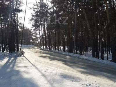 Дача с участком в 15 сот., Светлый за 325 млн 〒 в Щучинске — фото 46