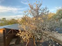 8-комнатный дом, 300 м², 11 сот., мкр Калкаман-3, Калкаман-2 за 95 млн 〒 в Алматы, Наурызбайский р-н