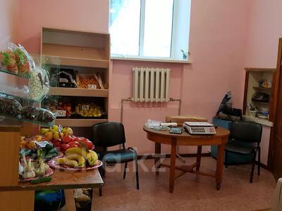 Магазин площадью 300 м², Старый город за 28 млн 〒 в Рудном — фото 9