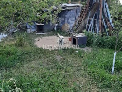 Дача с участком в 6 сот., Клубничная 33 за 6 млн 〒 в Есик — фото 10