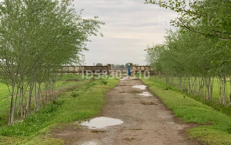 действующее крестьянское хозяйство за 40 млн 〒 в Мырзакенте