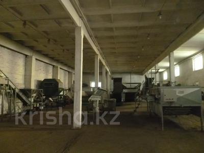 Здание склада (картофелехранилище) за ~ 69.6 млн 〒 в Усть-Каменогорске — фото 6