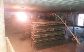 Птица фабрика за 25 млн 〒 в Шымкенте, Аль-Фарабийский р-н
