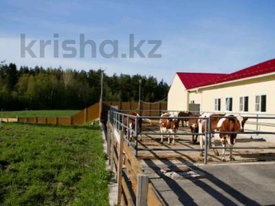Продам действующий бизнес-крестьянское хозяйство за 500 млн 〒 в Аксу