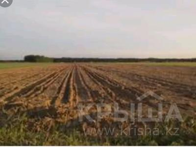 Продам действующий бизнес-крестьянское хозяйство за 500 млн 〒 в Аксу — фото 4