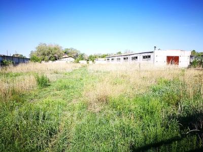 8-комнатный дом, 280 м², 30 сот., Куанова 18а за 15.9 млн 〒 в Кенжеколе — фото 3