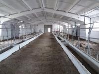 Крестьянское хозяйство - родовая усадьба + щебеночный карьер за 775 млн 〒 в Нур-Султане (Астане)