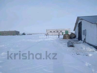 Готовый бизнес за 160 млн 〒 в Караганде — фото 11