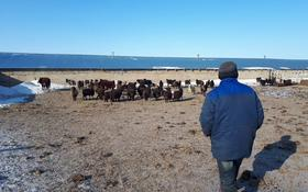 Действующее крестьянское хозяйство в г.Актобе за 90 млн 〒 в Актюбинской обл.
