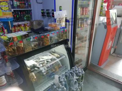 Магазин площадью 100 м², Береговая 11 за 28 млн 〒 в Усть-Каменогорске — фото 19