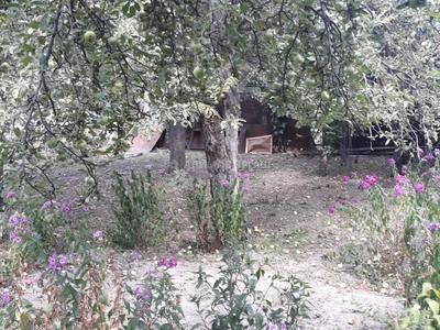 4-комнатный дом, 93 м², 8 сот., Пчеловодная 6 — Бухар Жирау за 69 млн 〒 в Алматы, Бостандыкский р-н — фото 33
