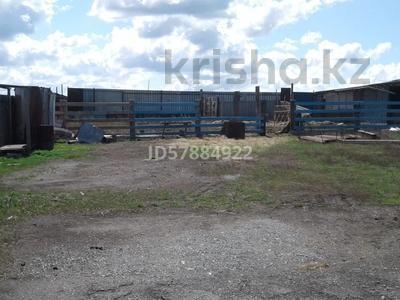 Хозяйство за 4.7 млн 〒 в Караганде, Казыбек би р-н — фото 7
