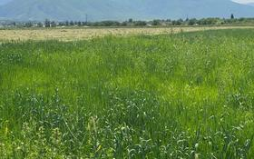 Участок 2.54 га, Ташкентский тракт — Алдашева за 14 млн 〒 в в селе Шамалган