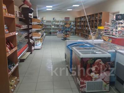 Склад продовольственный 40 га, Сырыма Датова 100 за 160 млн 〒 в Уральске — фото 6