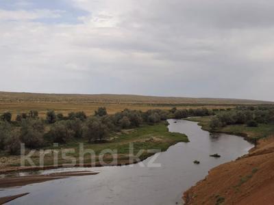крестьянское хозяйство за 387 млн 〒 в Капчагае — фото 2