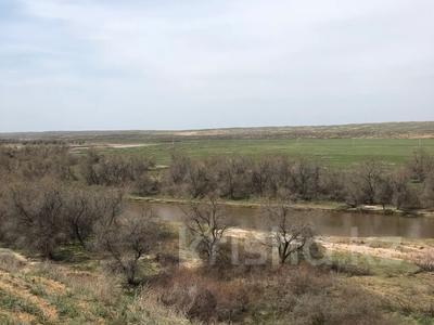 крестьянское хозяйство за 387 млн 〒 в Капчагае — фото 6