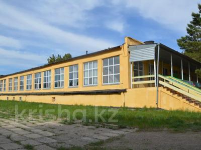 Детский лагерь/зона отдыха (действующий бизнес) за 400 млн 〒 в Павлодаре — фото 15