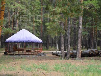 Детский лагерь/зона отдыха (действующий бизнес) за 400 млн 〒 в Павлодаре — фото 4