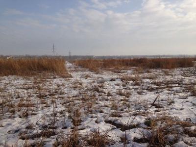 Участок 400 соток, Алматинская обл. за ~ 103.2 млн 〒 — фото 3