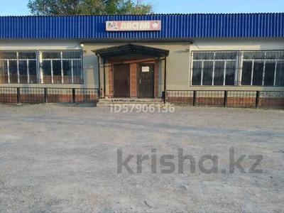 Магазин площадью 361 м², Село Топар — Центральная 7 за 10 млн 〒 в Капчагае — фото 6