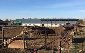 Молочная Товарная Ферма (МТФ) за 200 млн 〒 в Есик