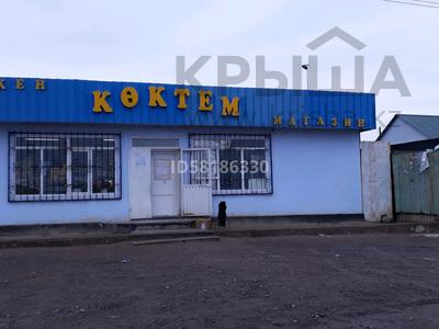 Магазин площадью 133 м², Виноградная 3 за 21 млн 〒 в Капчагае