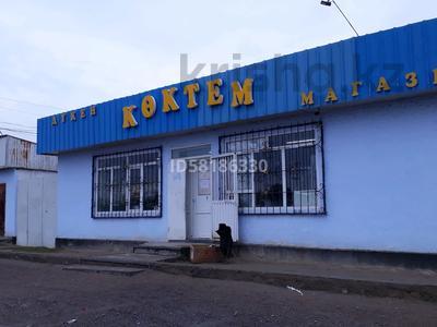 Магазин площадью 133 м², Виноградная 3 за 21 млн 〒 в Капчагае — фото 4