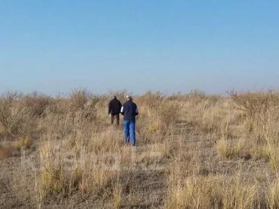 Участок 40 соток, Кабанбай — Алаколь за 18.2 млн 〒 в Урджаре