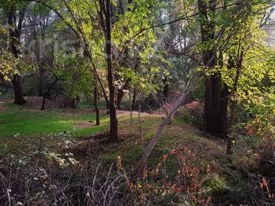 Участок 2 га, Васильевский — Манас за 160 млн 〒 в Бишкеке — фото 45
