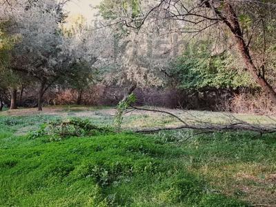 Участок 2 га, Васильевский — Манас за 160 млн 〒 в Бишкеке — фото 58