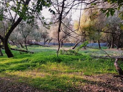 Участок 2 га, Васильевский — Манас за 160 млн 〒 в Бишкеке — фото 59