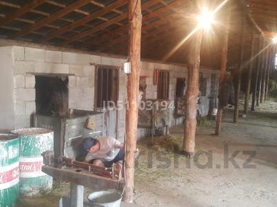 фазенду под откорм за 15 млн 〒 в Таразе — фото 7