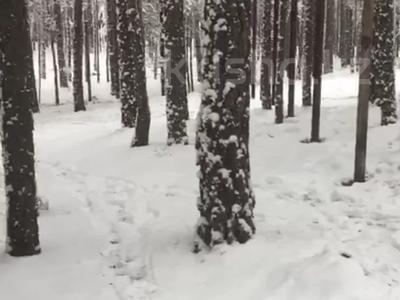 Участок 5 соток, Зелёная за 4 млн 〒 в Щучинске — фото 3