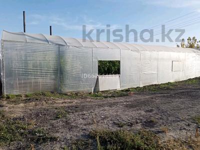 Тепличный бизнес за 7 млн 〒 в Жаугаштах — фото 4