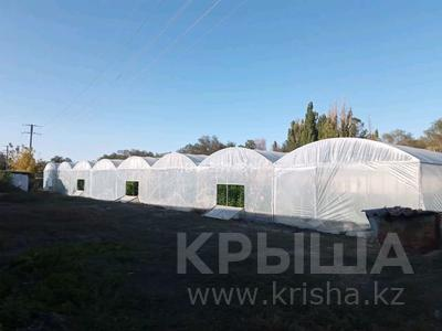Тепличный бизнес за 7 млн 〒 в Жаугаштах — фото 5