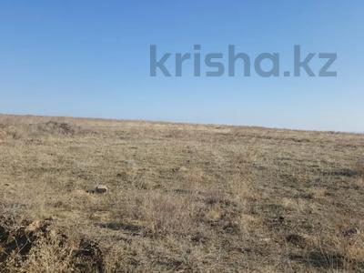 Участок 4 га, Ардагер уч.№1 за 31 млн 〒 в Капчагае — фото 3