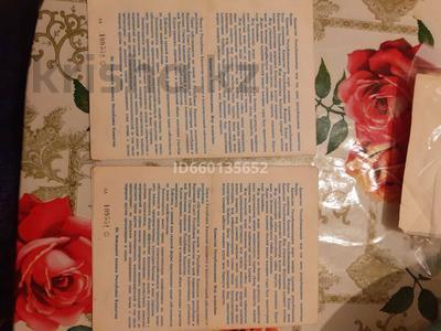Дача с участком в 16 сот., Энергетик 9 — Линия за 999 000 〒 в Акшах — фото 12