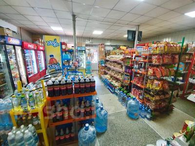 Продуктовый магазин за 82 млн 〒 в Алматы, Ауэзовский р-н — фото 5