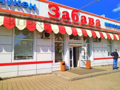 Магазин площадью 837 м², Карасай батыра 1А за 155 млн 〒 в Нур-Султане (Астана), Сарыаркинский р-н