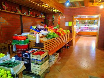 Магазин площадью 837 м², Карасай батыра 1А за 155 млн 〒 в Нур-Султане (Астана), Сарыаркинский р-н — фото 13