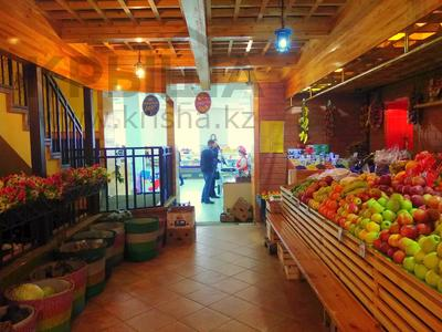 Магазин площадью 837 м², Карасай батыра 1А за 155 млн 〒 в Нур-Султане (Астана), Сарыаркинский р-н — фото 14