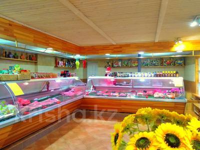 Магазин площадью 837 м², Карасай батыра 1А за 155 млн 〒 в Нур-Султане (Астана), Сарыаркинский р-н — фото 15