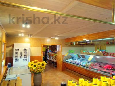 Магазин площадью 837 м², Карасай батыра 1А за 155 млн 〒 в Нур-Султане (Астана), Сарыаркинский р-н — фото 16
