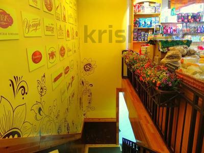 Магазин площадью 837 м², Карасай батыра 1А за 155 млн 〒 в Нур-Султане (Астана), Сарыаркинский р-н — фото 18