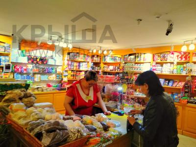 Магазин площадью 837 м², Карасай батыра 1А за 155 млн 〒 в Нур-Султане (Астана), Сарыаркинский р-н — фото 19
