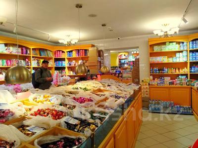 Магазин площадью 837 м², Карасай батыра 1А за 155 млн 〒 в Нур-Султане (Астана), Сарыаркинский р-н — фото 21
