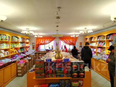 Магазин площадью 837 м², Карасай батыра 1А за 155 млн 〒 в Нур-Султане (Астана), Сарыаркинский р-н — фото 22